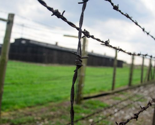 "faculty-led program on ""the holocaust"""